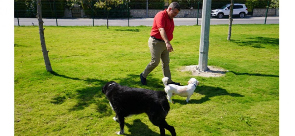 Başkan Oran'dan hayvanseverlere müjde; Köpeklere özel 5 'Pati Park' daha geliyor!